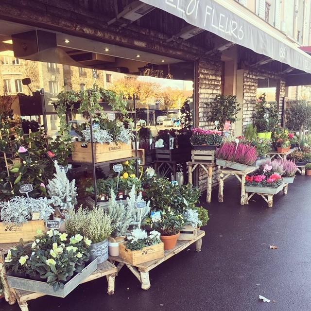 boutique de fleurs à Maisons-Alfort
